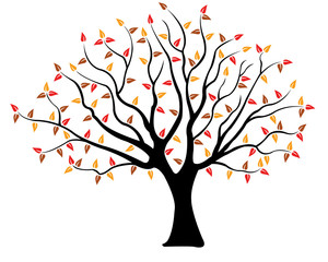 Illustration of a tree with brown, yellow and red leaves isolated on white