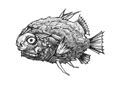 Scary black fish on a white background. Fictional underwater creature. Graphic hand drawn illustration. It can be used for printing on t-shirts and idea for tattoo or using for cover, etc.