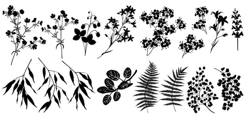 Silhouettes of forest and garden plants and flowers. Set of vector illustrations isolated on white background.