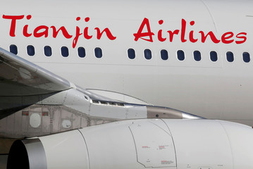 The logo of Tianjin Airlines is pictured on passenger aircraft on the tarmac in Colomiers near Toulouse