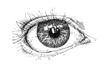 Beautiful hand drawn opened eye. Graphic ink Illustration with a human eye. Detail closeup image. It can be used for printing on t-shirts, cards, or used as ideas for tattoos.