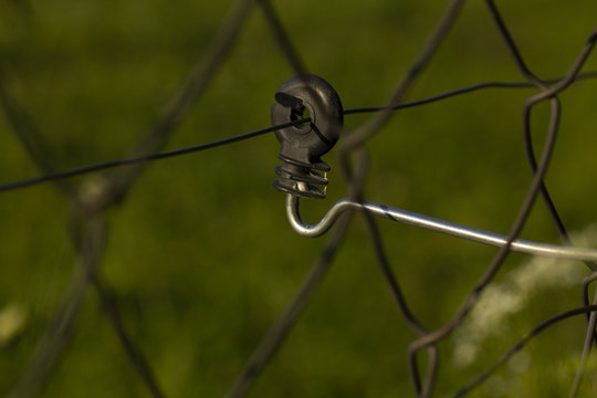 electric fence on a green background. insulator ring. insulator for the electric fence. Electric fence