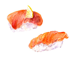 Watercolor hand painted drawing - sushi with salmon