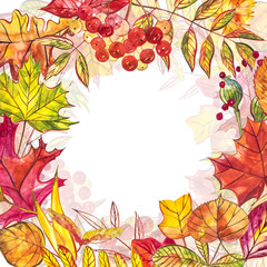 Autumn background with golden and red leaves with berries. Watercolor illustration.
