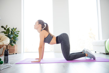 Asana meditation studio people person posture rest relax lifestyle beauty fashion butt concept. Full length size photo of beautiful peaceful calm lady wearing sporty clothes doing exercise for back