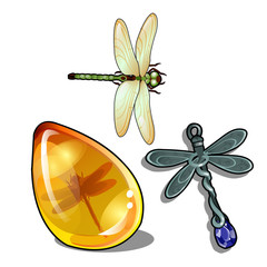 Set of vintage objects and jewelry on the theme of dragonflies isolated on a white background. Insect in amber. Vector cartoon close-up illustration.