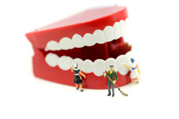 Miniature people clean tooth or dental model,healthcare medical concept.