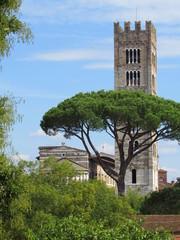 Campanile di Lucca