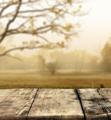 Autumn background of wooden desk and landscape with sun light. Free space for your product.