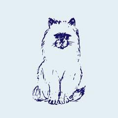 Hand drawn sketch of cat. Line ink drawing. Blue colors. Fluffy little pet. Cute furry sitting kitten. Vector animal illustration.