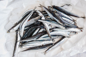 anchovies just caught, close up