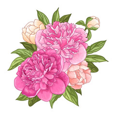 Floral background with a bouquet of pink peony flowers