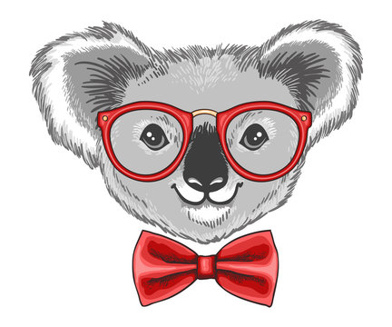 Hand drawn illustration of koala bear in glasses and a bow tie