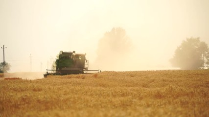 Etiqueta Engomada - Combine harvester harvests grain in the field at sunset. Behind him is a cloud of dust.