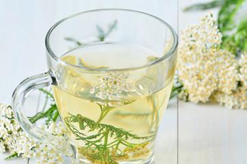 Yarrow medicinal tea in glass mug and yarrow flowers over light blue wooden table (Achillea millefolium) closeup