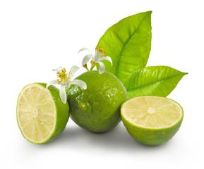 Fototapete - Isolated image of lemons close-up