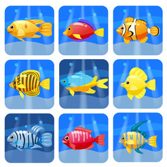 Cartoon trendy colorful reef animals big set. Fishes, mammal, crustaceans.Dolphin and shark, octopus, crab, starfish, jellyfish. Tropic reef coral wildlife.