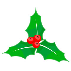 Holly berry Christmas on white background, stock vector illustration