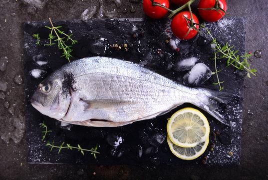 Raw bream fish