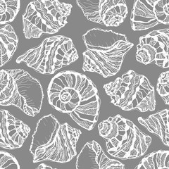 Vector seamless pattern from white seashell on gray background. Hand drawn sketches mollusk sea shells.