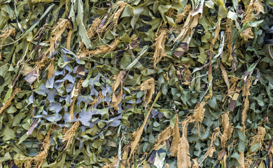 Military Camouflage Ghillie Background