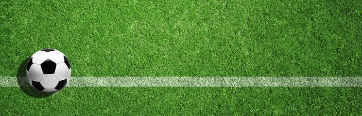 Ball auf dem Fussballplatz Fotoväggar