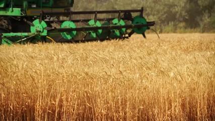 Etiqueta Engomada - Combine harvester for harvesting wheat.
