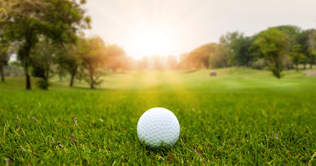 Golf ball on blurred beautiful green grass with sunlight in morning time. Sport and recreation playground for golf club concept.