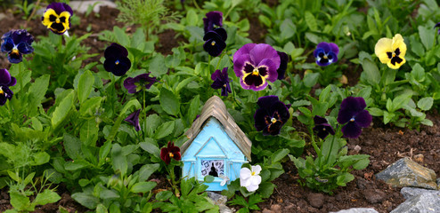 Cute blue house in viola flowers. Lovely miniature house for greeting cards, wedding or birthday concept, real estate, downsizing, home ownership. Vintage summer background