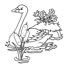 Goose cartoon illustration isolated on white background for children color book