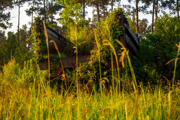 Overgrown Equipment