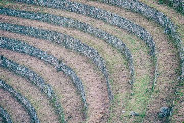 Detail of agriculture centre terraces covered by grass on the Inca Trail to Machu Picchu, Peru. Beautiful wallpaper.