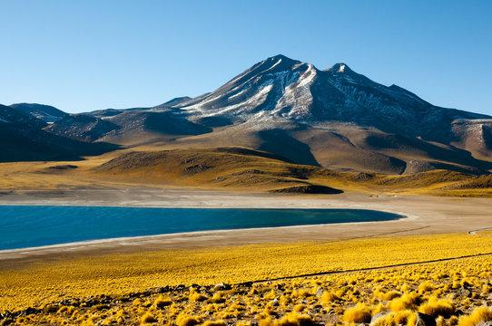 Miscanti Lagoon - Chile