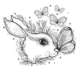 Sketch graphic illustration rabbit and butterfly with mystic and occult hand drawn symbols. Vector illustration.