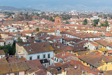 Medieval town of Lucca view from Guinigi tower, Tuscany, Italy