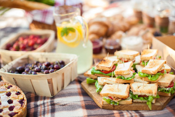 photo outdoor picnic picnic, nature in the garden, snacks, cupboards, close-up Wall mural