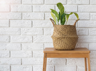 Green plant in a straw basket near the white brick wall