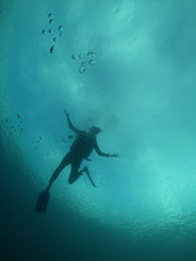 Diver Silhouette under water