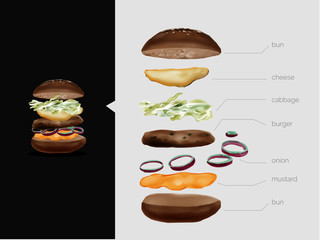 Illustrated Burger with separate ingredients