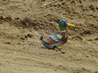 Toy tin duck walking in sand on a beach