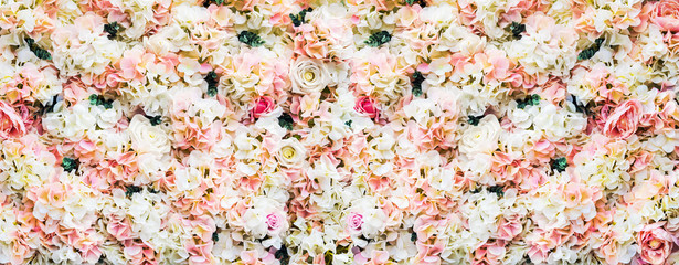 Wall Murals Floral rose flowers are white and pink. background of garden flowers