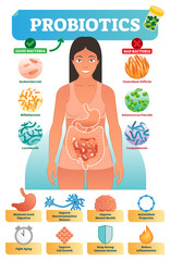 Vector illustration with probiotics. Medical bacteria and health benefits collection poster with escherichia, bifidobacteria, lactobacilli, clostridium and campylobacter.