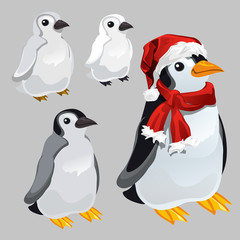 Penguin in red scarf and hat in the style of new year and Christmas isolated on grey background. Vector cartoon close-up illustration.