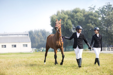 Young Chinese couple walking on grassy field with horse