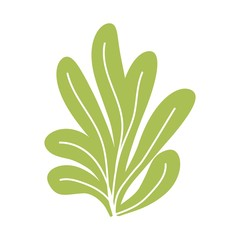 green algae bush isolated vector. on a white background