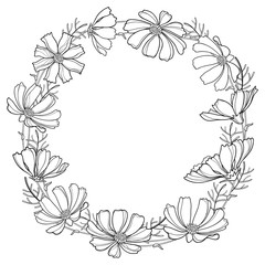 Vector round wreath or garland with outline Cosmos or Cosmea flower bunch and ornate leaf in black isolated on white background. Contour blooming Cosmos plant for summer design and coloring book.