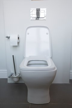Interior of toilet at home