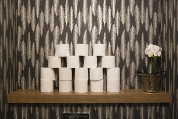 Stack of toilet paper at home