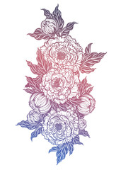 Peony flower with leaves. Nature floral line art.