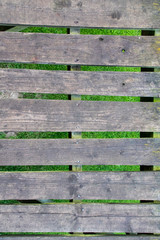 Wooden slats suspended over grass